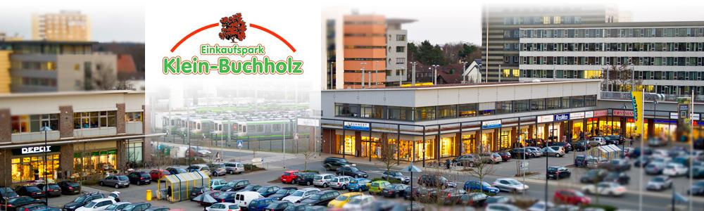 logo-buchholz-300
